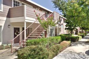 Exterior building, door entrance, trees, plants, sidewalk, stairway
